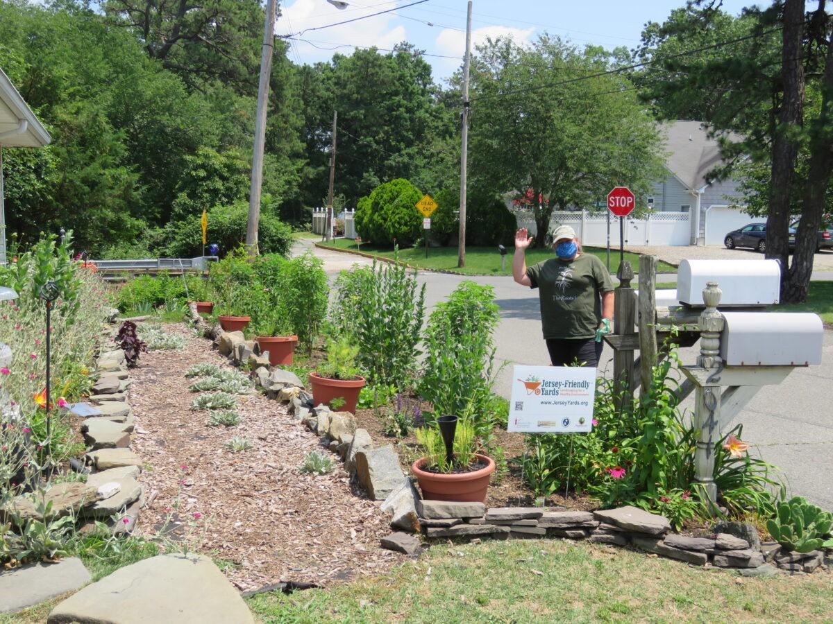 Photo of pollinator garden