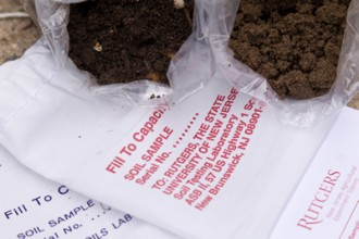 Image of soil test
