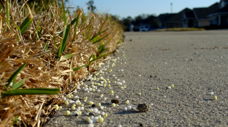 Image of fertilizer on sidewalk next to a lawn area.