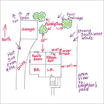 Image of a yard design sketch