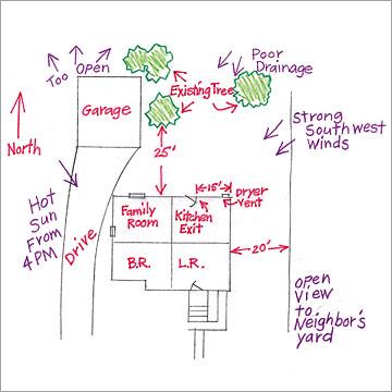 Image of a yard design sketch