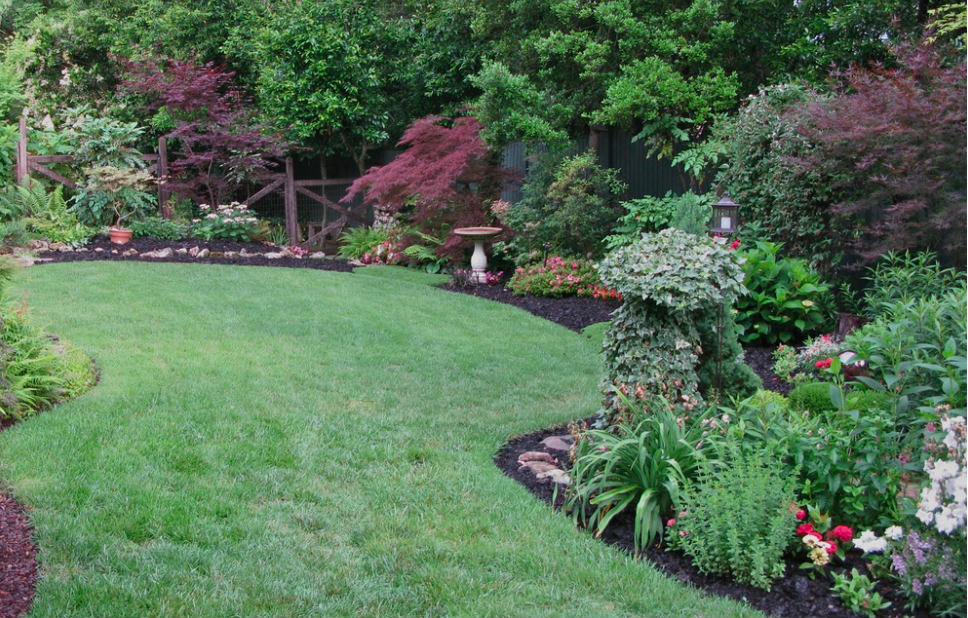 Reducing lawn areas is a good first step to reducing fertilizer needs.