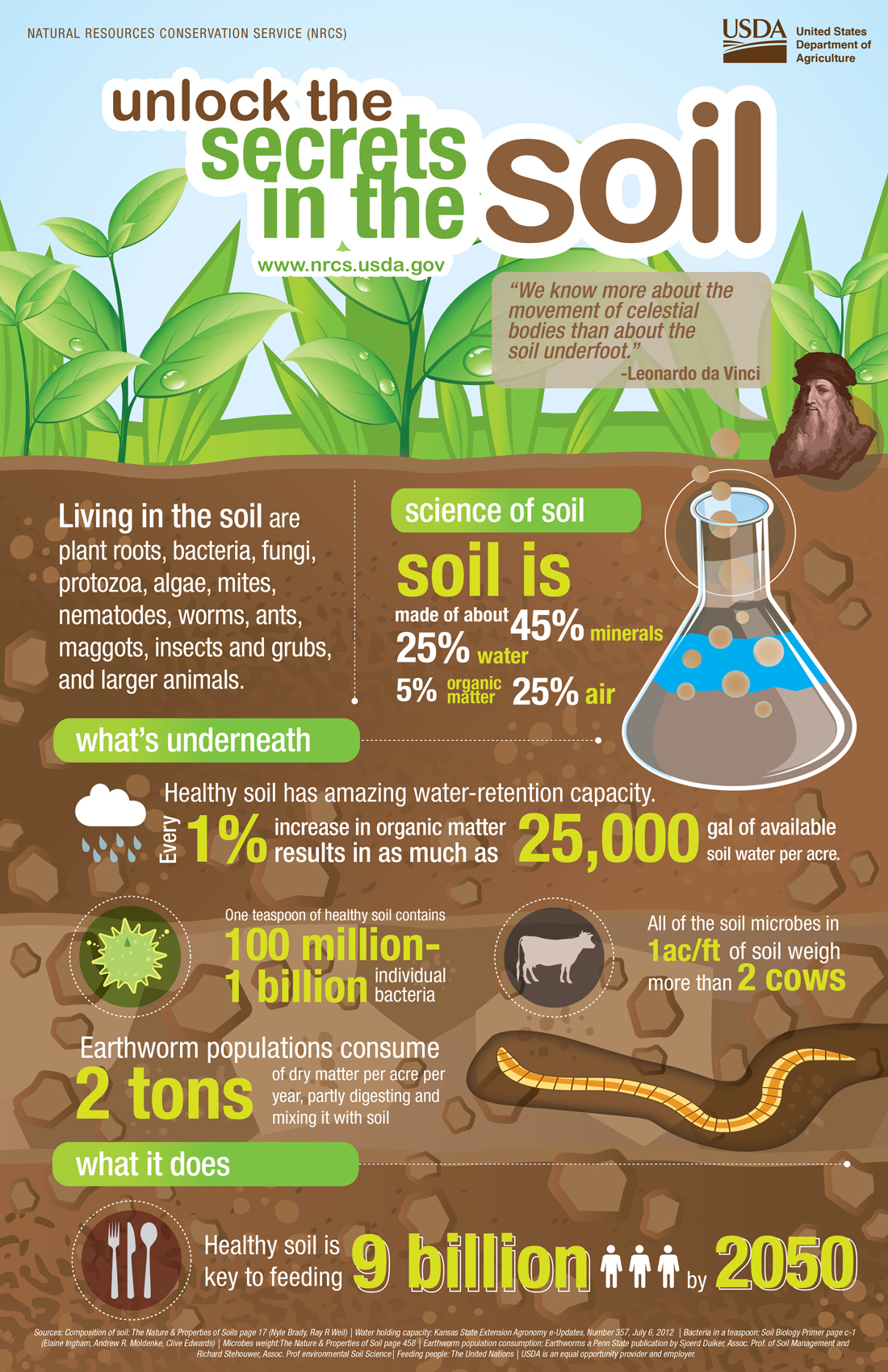 Healthy soils healthy waters jersey friendly yards for What is soil for kids