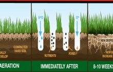 Soil aeration leads to deeper root growth and healthier lawn areas.
