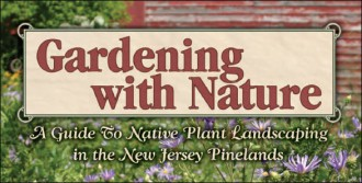 pine barrens landscaping guide
