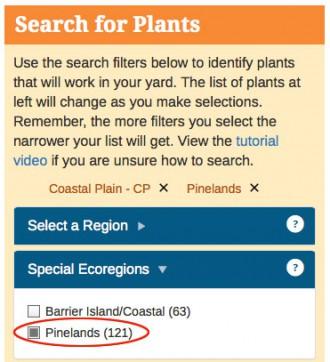 Plant-database-pine-barrens-plants2